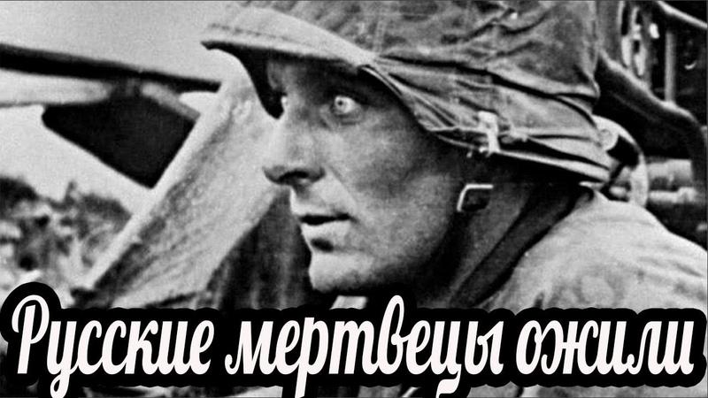 Русские мертвецы ожили. Воспоминания Хельмута Фихта. Битва за Севастополь , военные истории