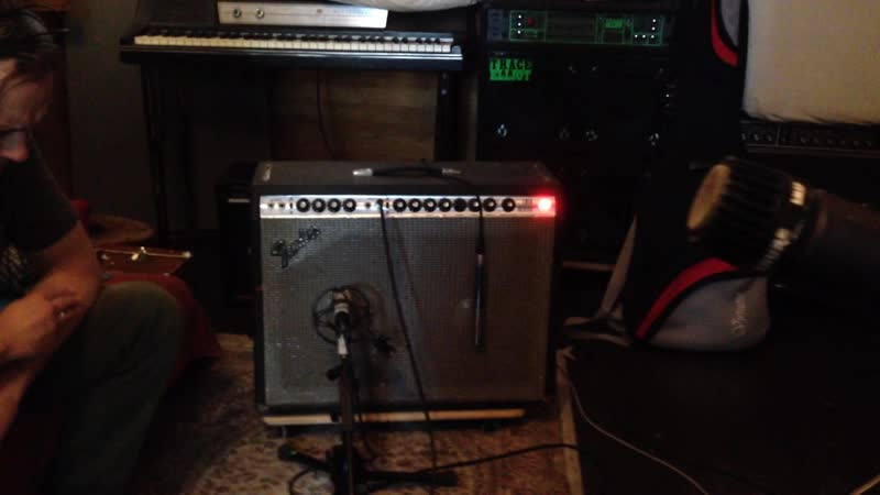 Электрогитары на vikkisound Govnr Telecaster Thinline Fender Twin Reverb 1980
