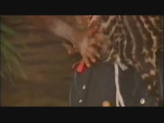 Нолливудский вавилон (сша, 2008 г.) nollywood babylon