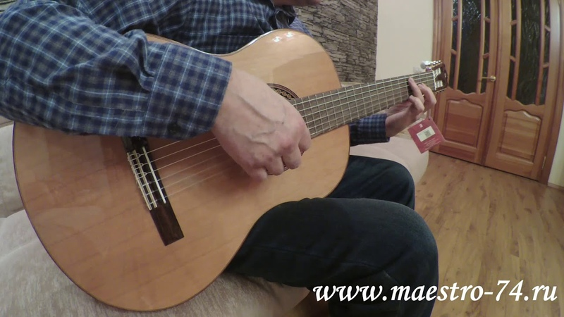 Классическая гитара Alhambra 8 806 Classical Student Iberia Ziricote