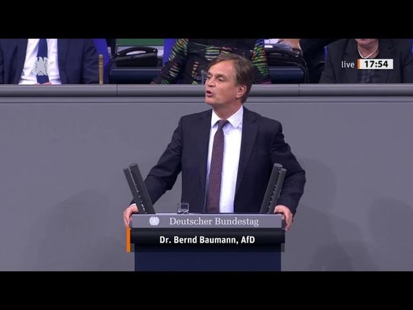 Bundestag Ein drittel abgeschobenen Flüchtlinge kommen wieder zurück Dr Bernd Baumann AfD
