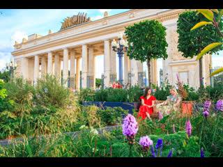 Прямое включение с площадок конкурс любительских цветников фестиваля #ЦветочныйДжем!