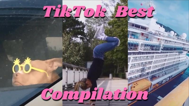 TikTok Best Compilation | memes, dance, funniest moments with pets 2019, 2020