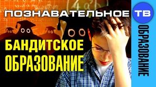 Среднее бандитское образование (Познавательное ТВ, Михаил Величко)