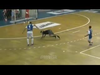 Футзал  Futsal - Читает игру , как открытую книгу