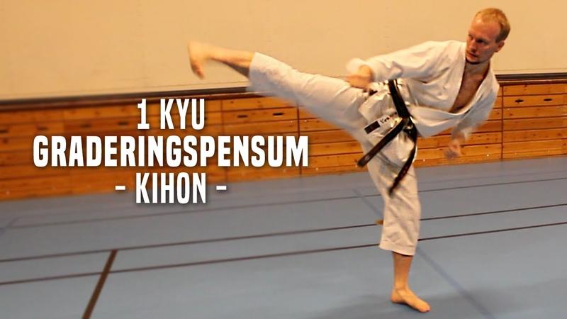 1.Kyu - Kihon