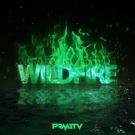 Обложка Wildfire - 2057 PRMITV