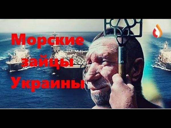 Морские зайцы Украины