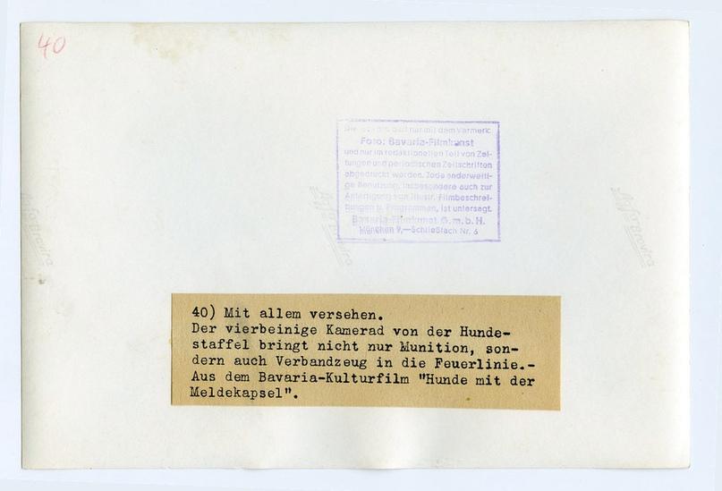 Рядовой вермахта Тассо, изображение №13