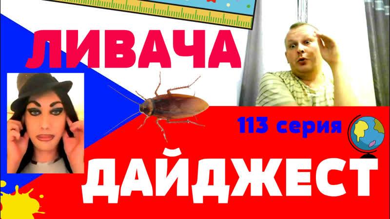 ЛИВАЧА ДАЙДЖЕСТ(113 серия)