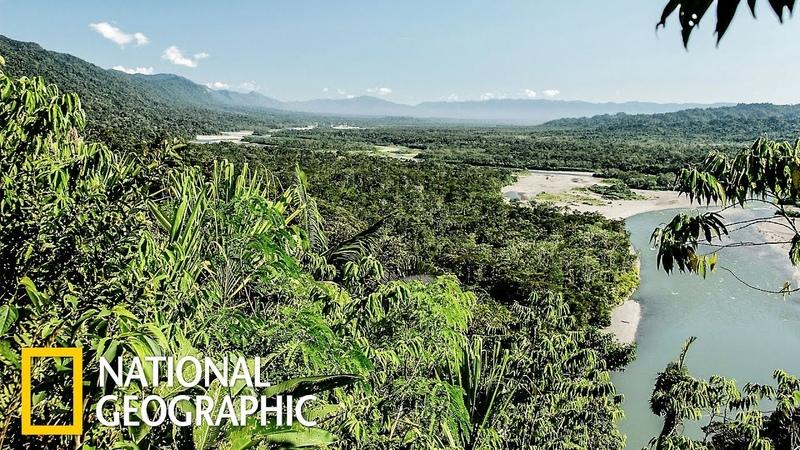 Ману затерянный тропический лес Перу National Geographic