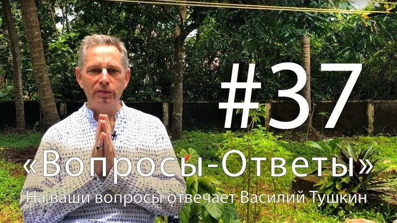 Вопросы-Ответы, Выпуск 37 - Василий Тушкин отвечает на ваши вопросы