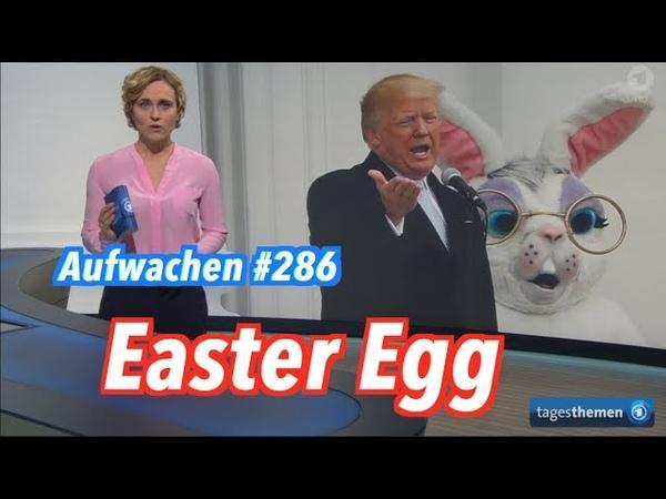 Aufwachen 286 Freihandel Zucker Münster das Schulsystem mit Lehrer Thomas