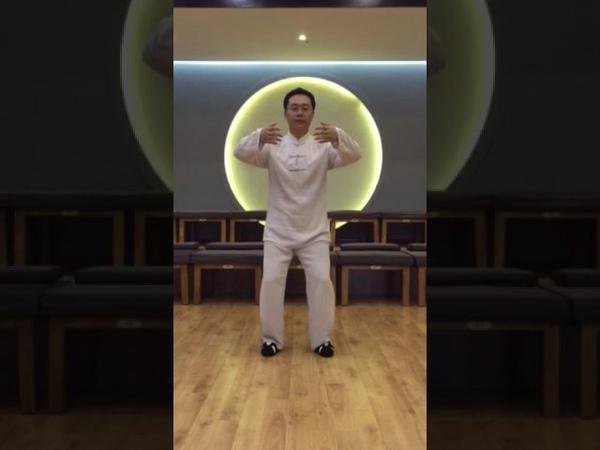 13 shi zhong ding shi в исполнении Мастера Ван Лина