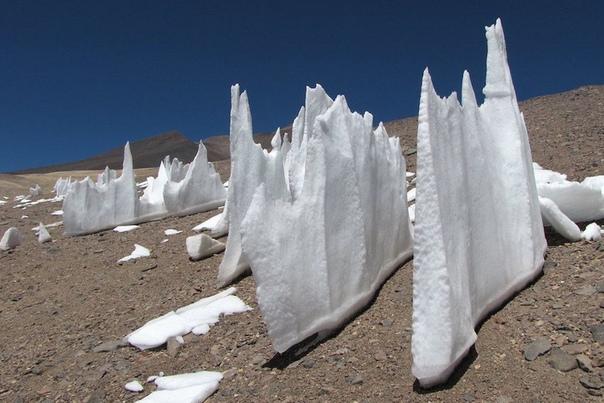 Кальгаспоры  снежные иглы высотой до 6 метров, которые встречаются в высокогорьях тропиков и субтропиков