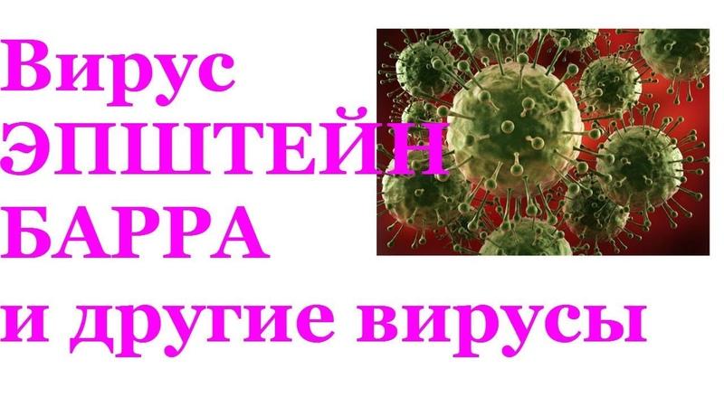 Вирусы человека. Как полностью избавиться от любых вирусов без дорогих лекарств? Николай Пейчев.