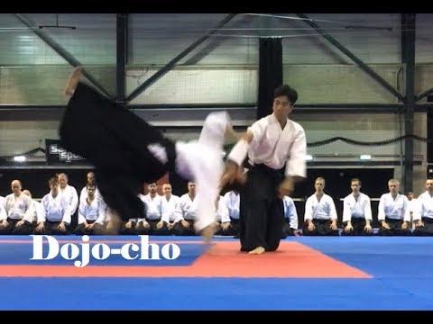 Ueshiba Mitsuteru Hombu Dojo cho Jiyu Waza