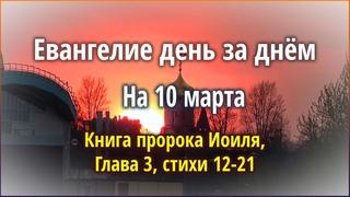 🔴 Евангелие день за днём (10 марта) - Книга пророка Иоиля, Глава 3, стихи 12-21