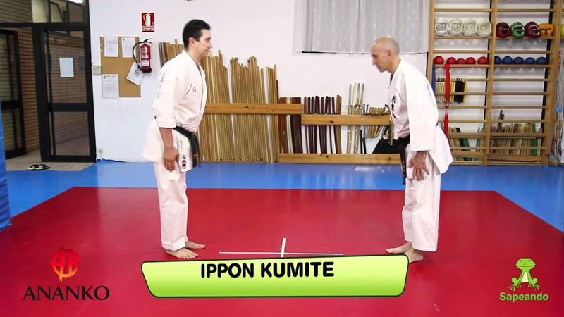 Renzoku waza y Kihon kumite 1 - Karate-do
