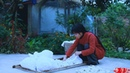 蚕丝被 Ancient Oriental methods of the Sericulture the solution to the cold Liziqi Channel