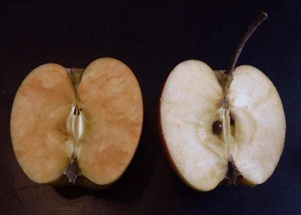 Почему яблоко на срезе ржавеет Нет, не из-за железа. Железо там есть, но ржаветь нечему, его слишком мало. Сейчас будет три непривычных названия веществ и много процессов окисления... Есть в