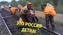 ЭТО РОССИЯ ДЕТКА / ЭТОТ НАРОД НЕПОБЕДИМ / Умом Россию не понять 2!