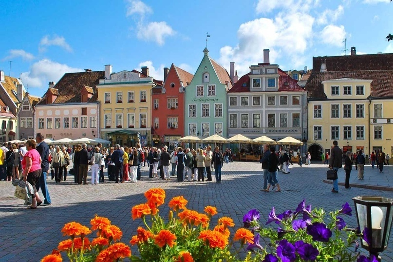Страны мира — Эстония, изображение №3