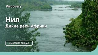 Река Нил (Северная Африка - Египет, Республика Судан и Восточная Африка - Республика Уганда, Республика Южный Судан)