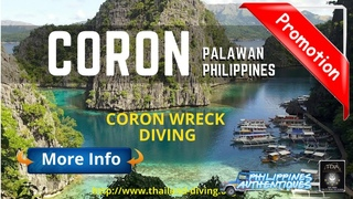 🏞️Scuba Diving Cruise in #Coron Philippines Palawan, Wreck diving at Appo Reef, Barracuda Lake