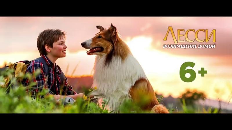 Лесси Возвращение домой Lassie Come Home 2020