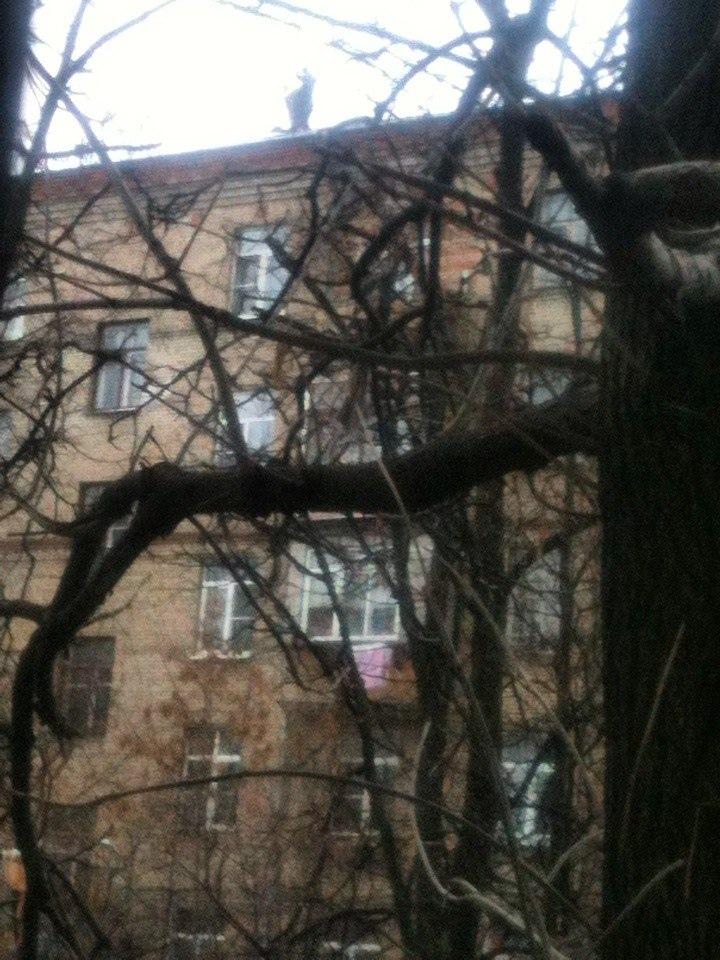 фото из альбома Павла Максимова №13
