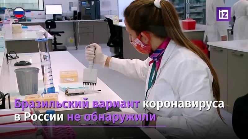 В России нашли южноафриканский штамм коронавируса