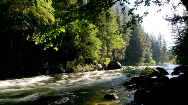 National park Yosemiti