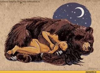 Animals - Bear`s