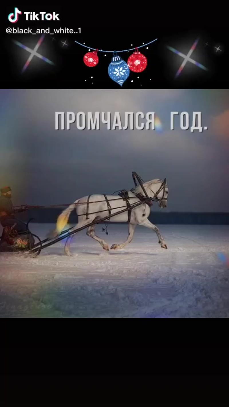 Видео от Марины Малыгиной
