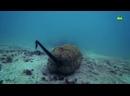 !Морской огурец или опасность анального дыхания