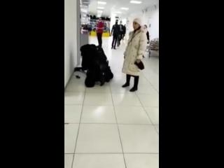 В полиции Красноярска объяснили жесткое задержание мужчины без маски в ТЦ