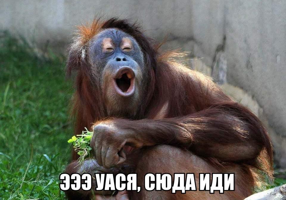 Александр, 40, Novomoskovsk