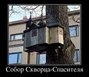Константин Белов фотография #43