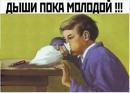 Фотоальбом Конченныя Типа