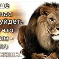 ФаизШоев