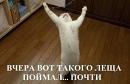 Фотоальбом Александра Федосеева