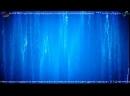 Прямой эфир из выставки СSTB Связь и телекоммуникации. Технологии, оборудование, решения, Ищем технологические решения для инте