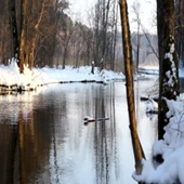 Footage Full HD (футаж) - frozen river