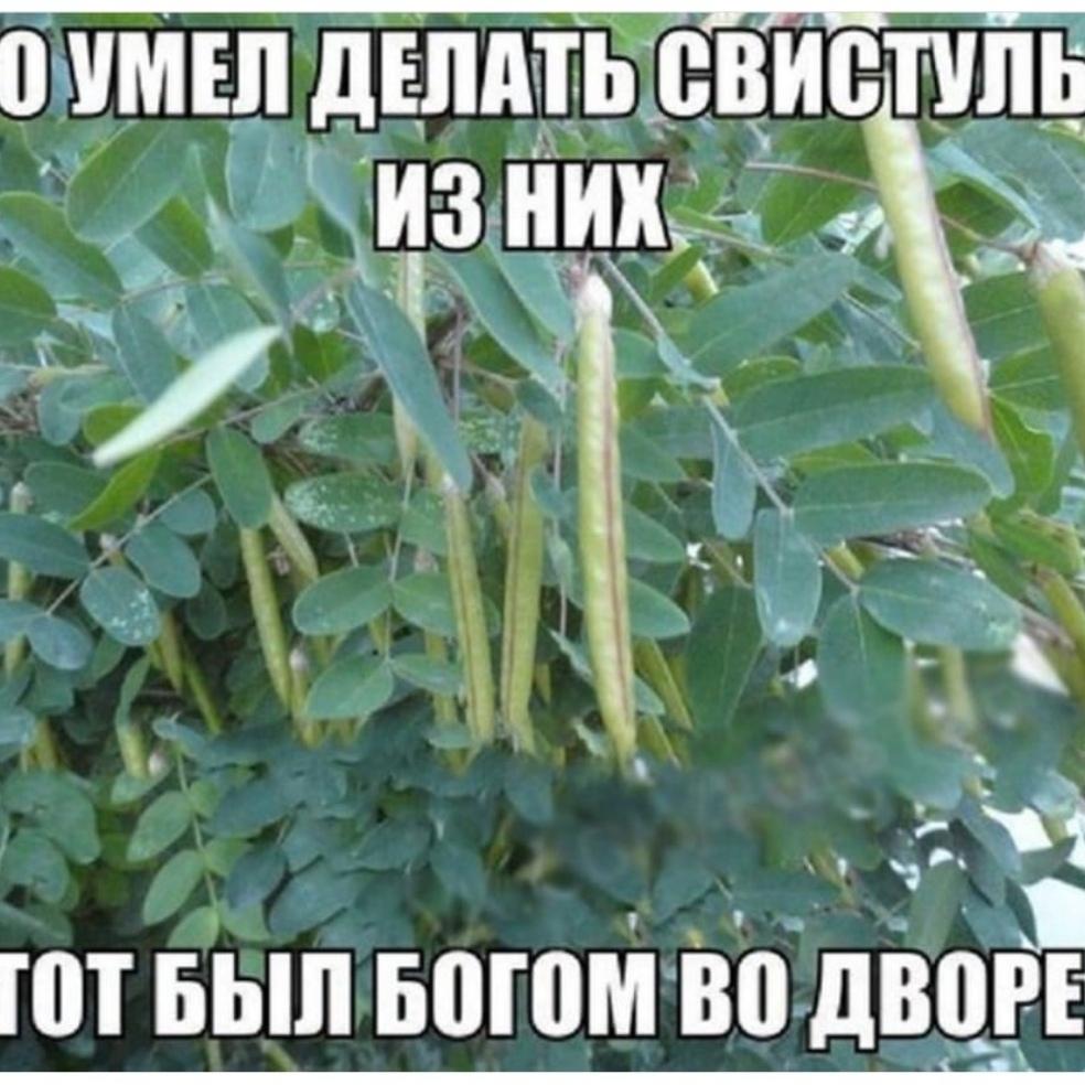 Александр, 42, Moscow