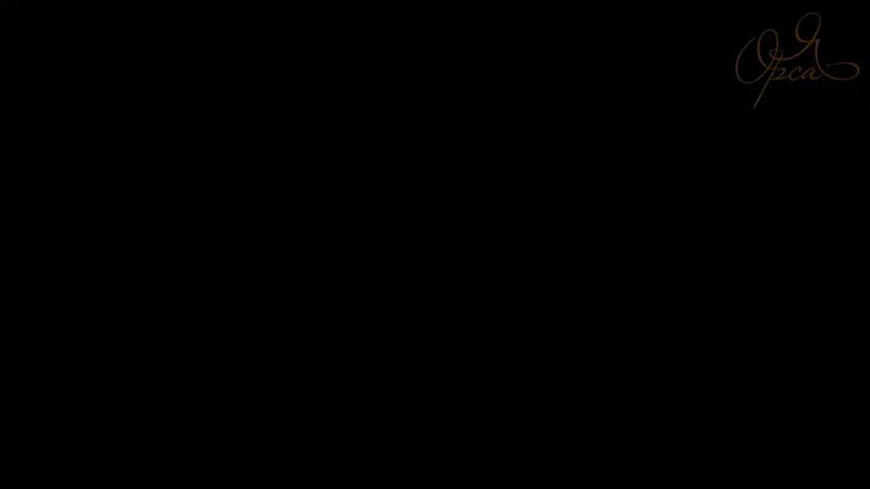 5 том энциклопедии Грамотный натюр Янины Орса.