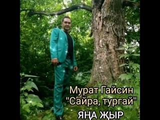 """Мурат Гайсин """"Сайра, тургай"""""""