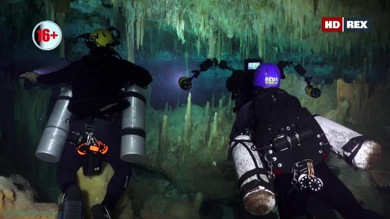 Подводный мир 01 серия Познавательный природа путешествие дайвинг