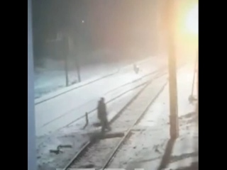 Поезд насмерть сбил девочку, гуляющую с пьяным отцом под Красноярском