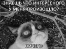 Персональный фотоальбом Марии Гореленко